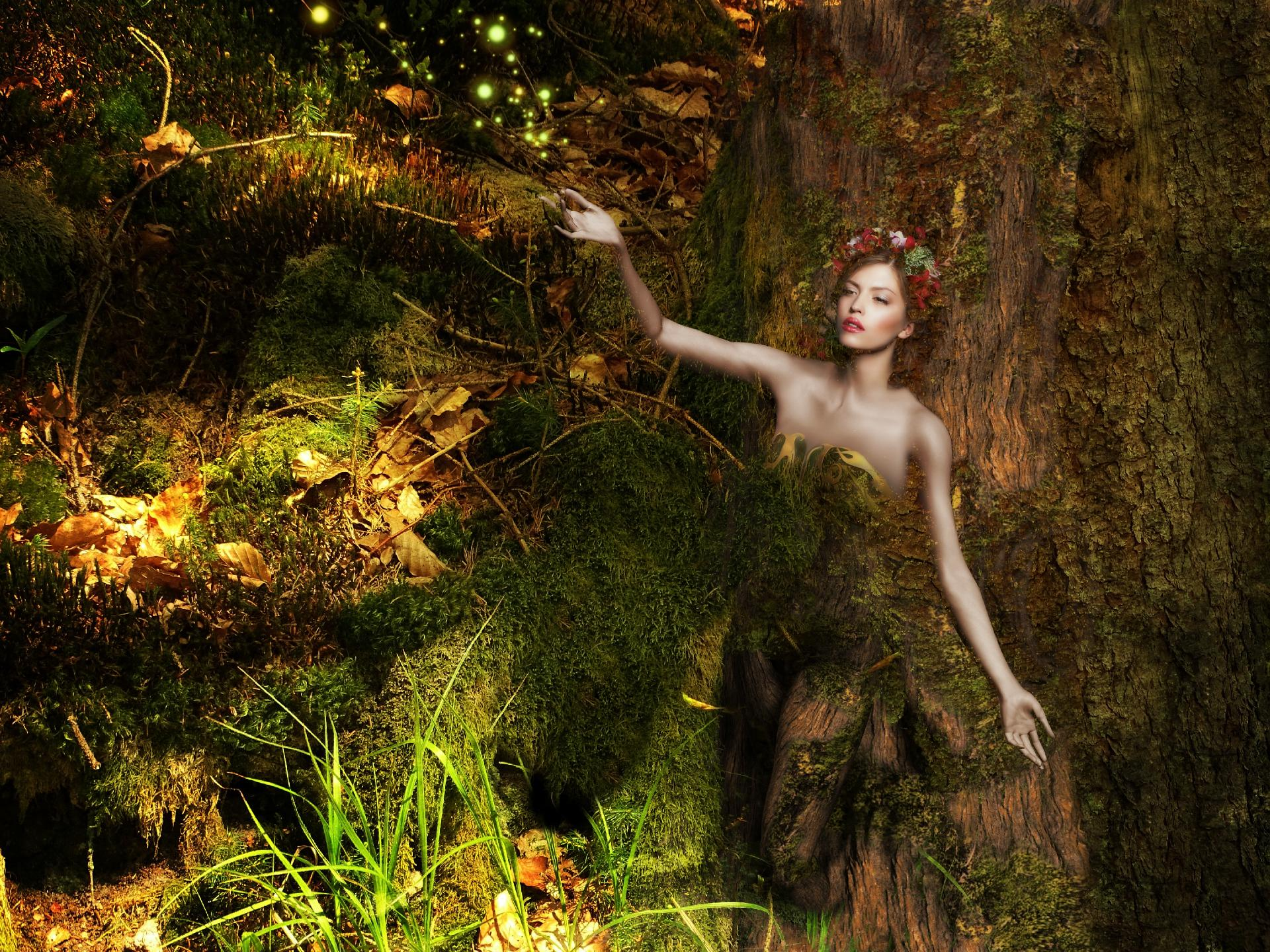 What Type of Witch Am I Wicca Faerie Witch