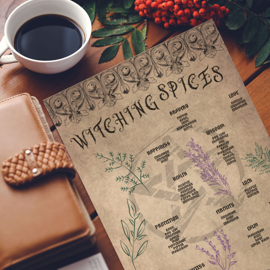 printable grimoire page printable book of shadows page parchment herbs